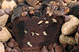 Taste-tested by its namesake, the Ted Williams. Generously sprinkled with pure dark chocolate morsels and fresh walnuts. Best-known grandmothers coffee cake is My Grandma's of New England Coffee Cake. Trans Fat Free, No Artificial Preservatives, No A...