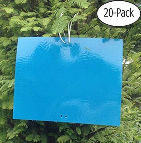 20 STKS Dubbelzijdige Sticky Fly Traps Blauwe Tuin Vliegenpapier Stickers Sticky Vliegenvangers 20 x 30 cm Plant Vliegenvangers voor Insect Aphids Schimmel Gnats Blad Mijnwerkers Witte Vliegen Motten (Inbegrepen Twist Ties)