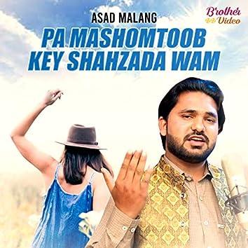 Pa Mashomtoob Key Shahzada Wam - Single