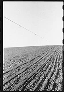 HistoricalFindings Photo: Corn Planting,Jasper County,Iowa,IA,Farm Security Administration,FSA,1940