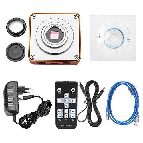 Fydun camera 21MP HDMI USB C-Mount Industrie Microscoop Camera Set 2K 1080P HD Video Camera EU Plug 220V