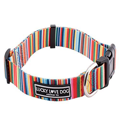 Lucky Love Dog Halsbänder | Hundehalsband für kleine Hunde – Regenbogenstreifen – Hippie, XS