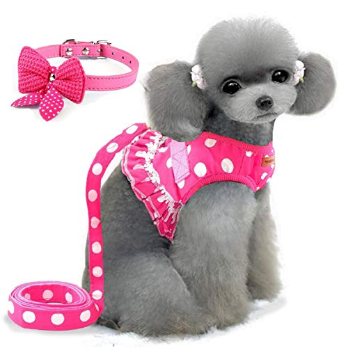 Cute Small Dog Harness, Ladies Polka Dots Dog Vest Harness Set with Pink Leash and Bowknot Collar, 3 in 1 Girl Style Vest Harness Set for Puppy and Cat (S, Pink)