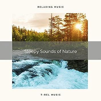 ! ! ! ! ! Sleepy Sounds of Nature