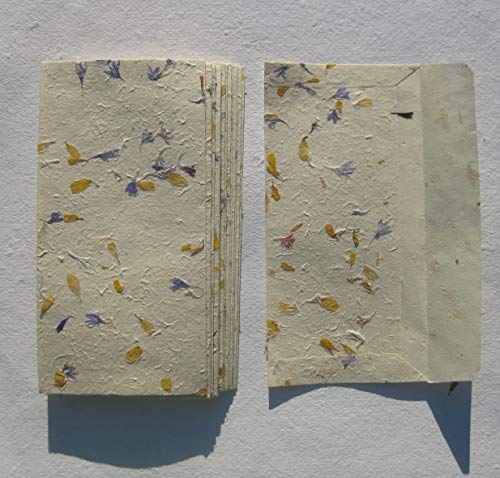 paperfreak: Blütenpapier Sonnenblume mit Kornblume Couverts/Umschläge Din lang handgeschöpft 15er Bund Seidelbast