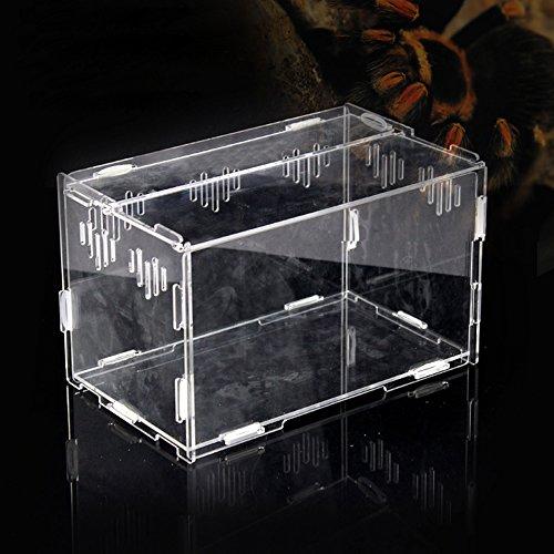 Casas para Reptiles, Tanque Transparente de la Caja de acrílico, Terrario de plástico Reptiles, terrarios, lagartos y Tortugas (25 * 15 * 15 CM)