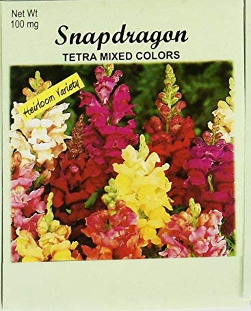 Set of 100 Super popular specialty store Flower Seed in Seeds Popular standard Bulk Snapd Packets