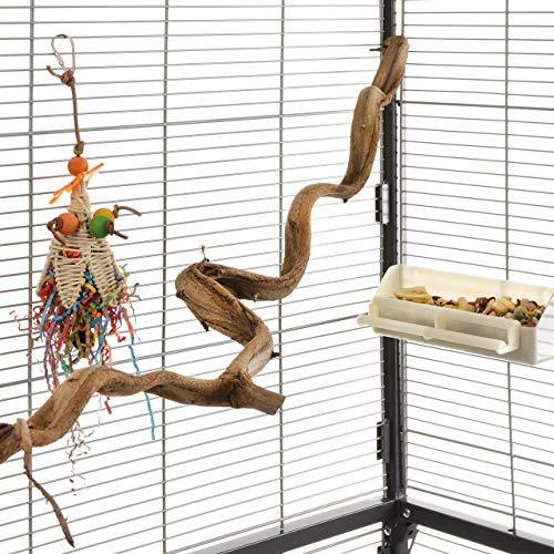 HappyBird ® | Natur Sitzstange für Wellensittiche echte Liane 90-100/1-2cm breit | die Kletterstange für Unzertrennliche