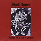 Songtexte von Skullflower - Fucked on a Pile of Corpses
