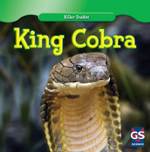 King Cobra (Killer Snakes)