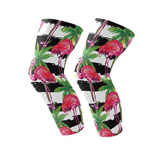 COOSUN Exotische roze Flamingo Vogels en palmbomen knie beugel, knie compressie mouwen ondersteuning voor hardlopen, artritis, meniscus scheuren, sport, gewrichtspijn verlichting en letsel herstel