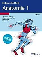 Endspurt Vorklinik: Anatomie 1: Allgemeine Anatomie ,Embryologie, Extremitaeten, Leibeswand