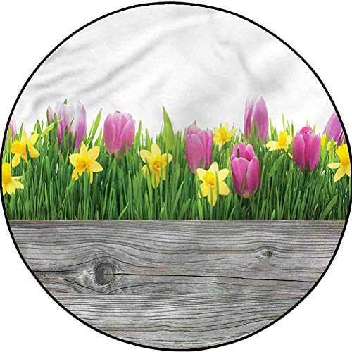 Daffodils Chic Area Rug Cozy Color Contemporary Soft Rug Spring Tulips Blossoms Diameter 78.7 in(200cm)