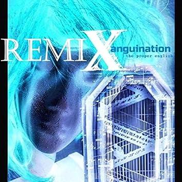 ReMixanguination
