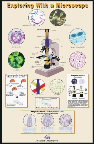 Neo/SCI 35-1006 Exploring with a Microscope Poster, Laminated, 23' x 35' Size