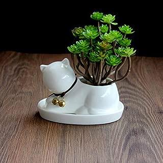 Cute Animal Cat Shaped Cartoon Ceramic Succulent Cactus Vase Flower Pot (Plant Not Included)