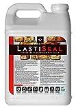 LastiSeal Brick & Concrete Sealer
