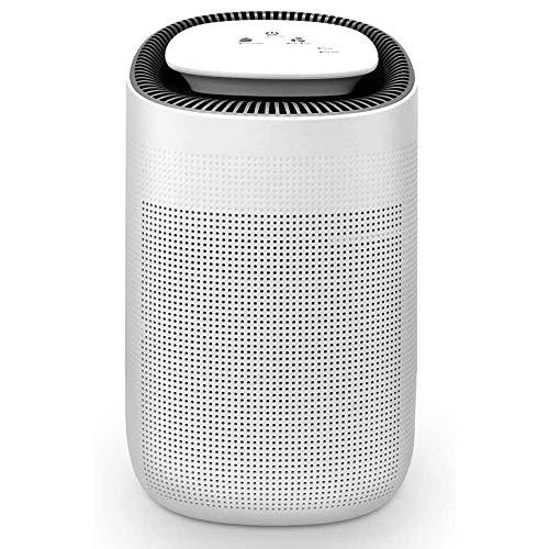 Deshumidificador 1000ml deshumidificador baja energía y purificador de aire, Apagado automático, control táctil ajustable velocidad de aire, de la humedad y la condensación en el hogar, limpia el aire