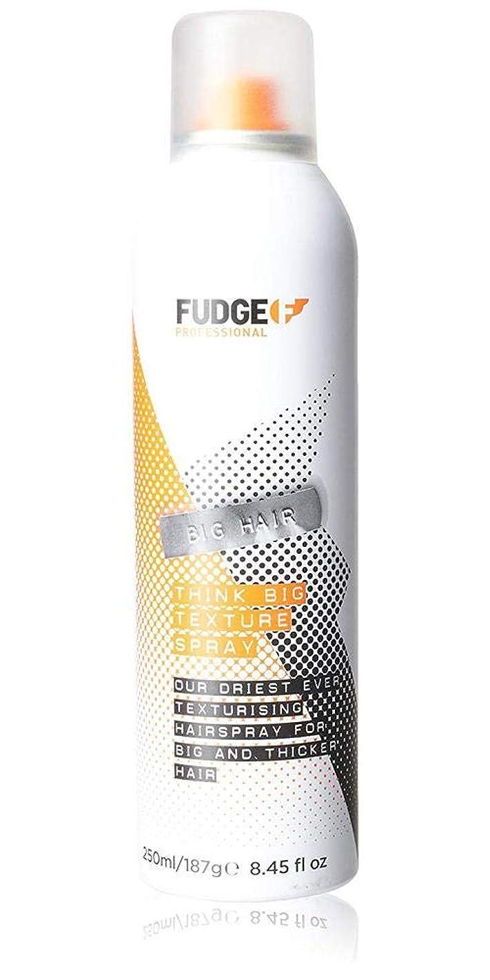 ブローホール前提専門知識Fudge Big Hair Think Big Texture Spray 250 ml
