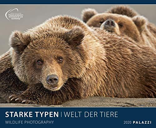 STARKE TYPEN 2020: WELT DER TIERE - lustige Tier-Motive - Bildkalender 60 x 50 cm Kalender Posterkalender - Wandkalender