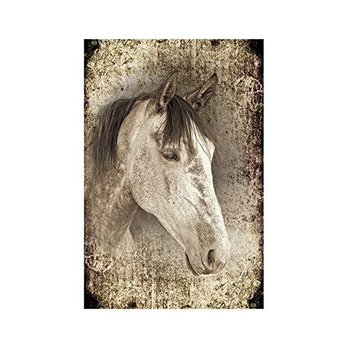 Elegante reine Pferdetiergemälde, gedruckt auf Plakaten und Drucken als Hauptdekoration 30x40cm