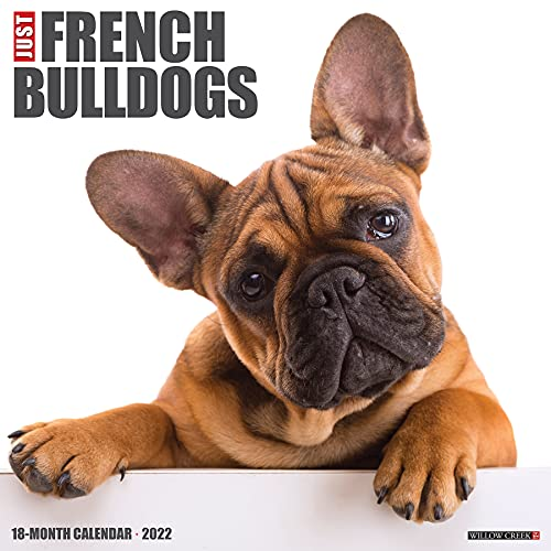Just French Bulldogs 2022 Wall Calendar, (Dog Breed)