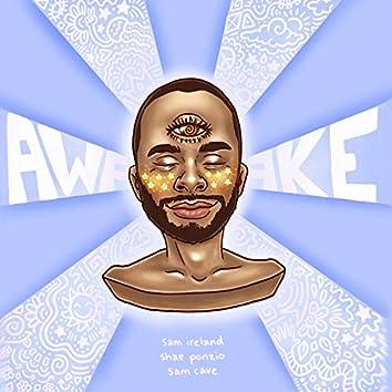 Awake (feat. Shae Ponzio & Sam Cave)
