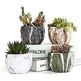 Range para Plantas al Aire Libre Modern Marring Flower Pot Suculento Pote Cactus Plantador de cerámica Potes Contenedor Bonsai Planters con Hole 3.35inch Idea de Regalo (Sheet Size : 4pcs In Set)