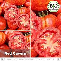 Pepperworld Red Cavern Bio Salat-Tomate, 10 Korn, Tomaten-Saatgut zum Anpflanzen, fleischig und schmackhaft