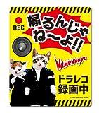 なめ猫 ドライブレコーダー ステッカー 煽るんじゃね〜よ 録画中 なめんなよ LCS839 グッズ 猫 ドラレコ