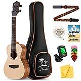 Donner Concert Ukulele, Solid Top Spruce Ukulele Kit with Gig Bag Strap String