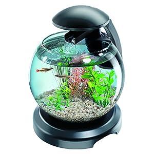Tetra Cascade Globe Black, LED Filtered Glass Aquarium 6.8...