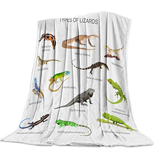 Super Soft Cozy Fannel Fleece Blanket Microfiber Throw Blanket Set of Reptile Icons Types of Lizards Warm Luxury Plush Bed Blanket for Kids Adults All Season Home Decor 39x49 Inch Twin Size