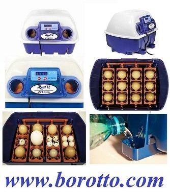 INCUBATRICE BREVETTATA PROFESSIONALE DIGITALE REAL 12 SEMI AUTOMATICA BOROTTO