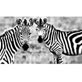 RELIABLI ART Canvas Painting Zebra Grass Pictures Animal Pictures Cuadros Wall Art Posters And Prints For Living Room Bedroom A 60x100cm