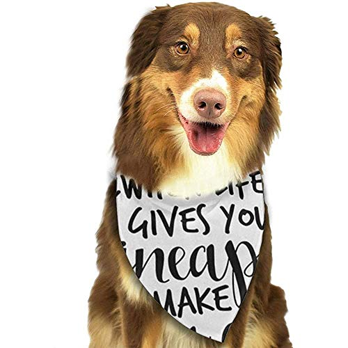 YAGEAD Pañuelo para Perros Cachorro y pañuelos para Mascotas, Frase de piña Cuando la Vida te da piñas Haz una Bufanda para Mascotas con piña Colada C