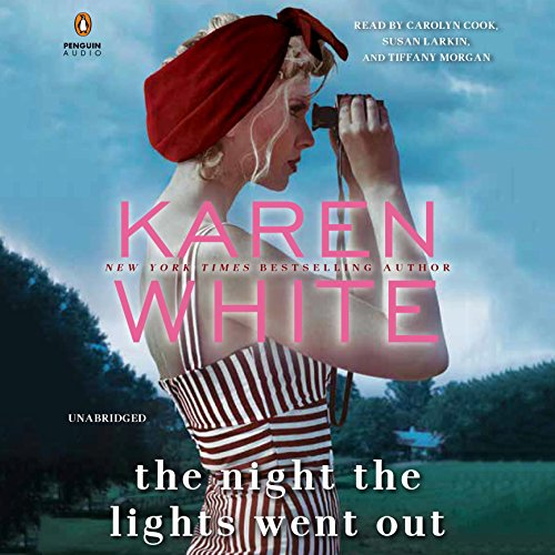 The Night the Lights Went Out audiobook cover art
