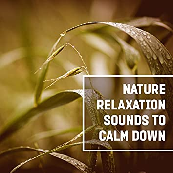 Nature Relaxation Sounds to Calm Down – Soft New Age Music, Water Waves, Rainfall, Soothing Sounds