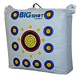 BIGSHOT Outdoor Range Field Point Bag Target