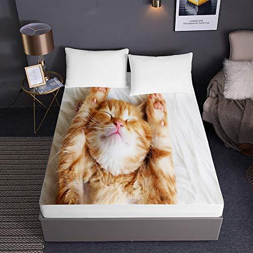 Treer Spannbettlaken Spannbetttuch aus Reiner Mikrofaser 3D Drucken Rutschfestem Bettlaken bis 30cm Matratzenhöhe in Vielen Größen und Farben Dekoratives (Orangene Katze,200x200x30cm)