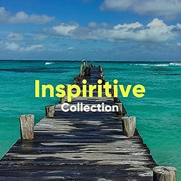 Inspiritive Collection