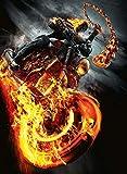 Poster Ghost Rider Spirit of Vengeance Movie 70 X 45 cm