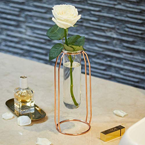 famibay Small Bud Glass Vases in Rose Gold Metal Rack Flower Planter Terrariums Plant Glass Clear Vase Decorative Centerpiece for Home Office 6.3 Inch