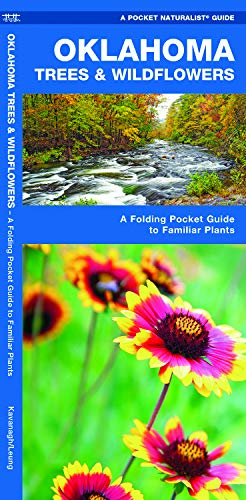 Oklahoma Trees and Wildflowers : An Introduction to Familiar Species (Pocket Naturalist - Waterford Press) (Pocket Naturalist Guides)