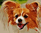 Yellow Puppy DIY Paint by Numbers Kit with Brushes and Acrylic Paints Birthday Gifts for Adults Kids Beginner Paint on Canvas 4050 cm 1620 inch (Without Frame)