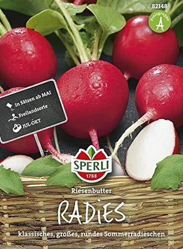 82148 Sperli Premium Radieschen Samen Riesenbutter ; Groß, Knackig, Aromatisch ; Radieschen Saatgut