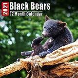 Calendar 2021 Black Bears: Cute Black Bear Photos Monthly Mini Calendar With Inspirational Quotes each Month