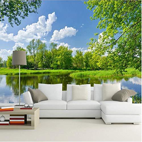 Hyllbb Fototapete Chinesischen Stil 3D Natur Landschaft Tapete Für Elder'S Room Home Decor Sofa Tv Hintergrund Wand Benutzerdefinierte 3D Fototapeten Wandbilder-140Cmx100Cm