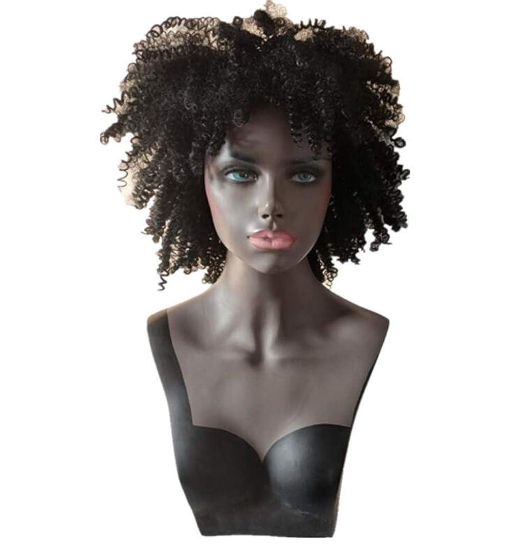 力学忘れっぽい実用的かつら合成レースフロントカーリーヘアピース耐熱用女性高品質合成