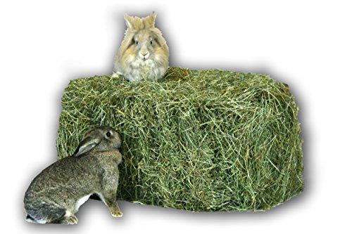 Heu 15kg Heu-Scheune® 1.Schnitt Heuballen Futter Kaninchen Meerschweinchen Hase